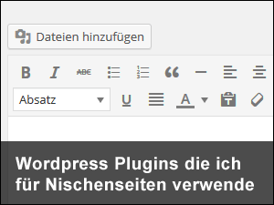 Wordpress Plugins Nischenseite