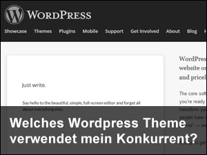 Wordpress Theme finden